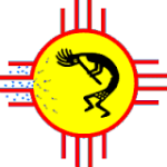 AVS NM logo